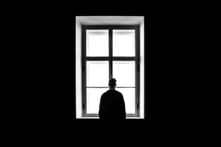 sasha-freemind- window